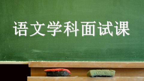 小学 语文 教师资格证面试教案写作技巧
