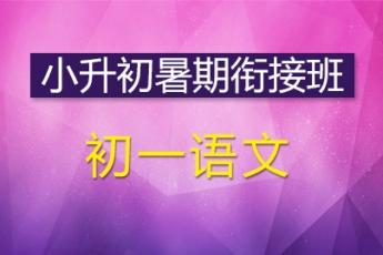 初中一年级语文小升初暑期衔接班